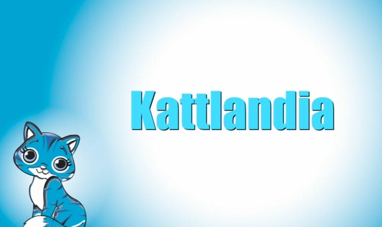Sinisellä pohjalla piirretty kuva kissasta, vieressä videon nimi tekstinä.